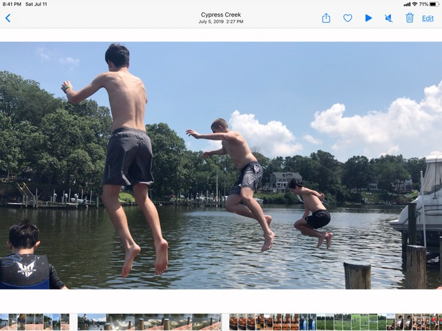 Jumping from the dock